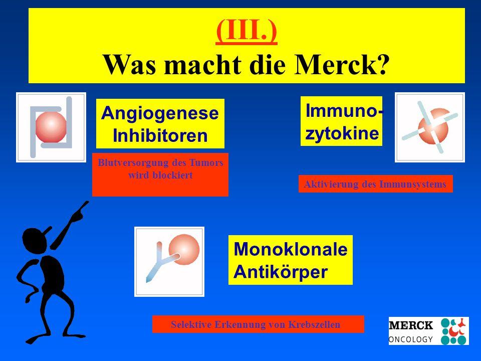 03.05.2001 17.00 Uhr s.t. Potsdam: 16.06.2001 GEHE Angiogenese Inhibitoren Blutversorgung des Tumors wird blockiert Immuno- zytokine Aktivierung des I