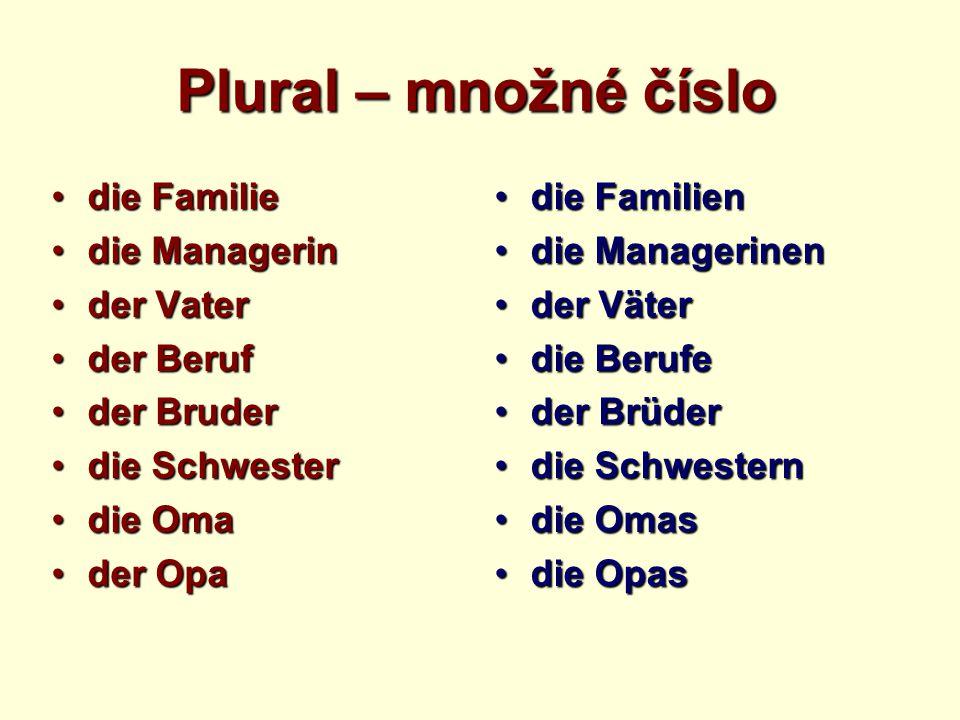 Plural – množné číslo die Familiedie Familie die Managerindie Managerin der Vaterder Vater der Berufder Beruf der Bruderder Bruder die Schwesterdie Sc