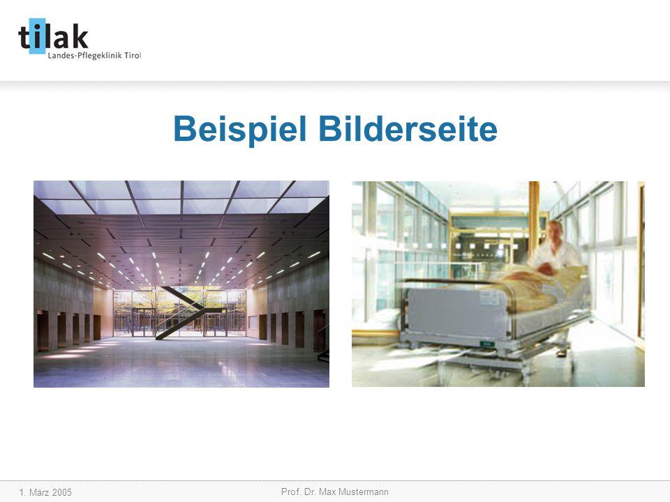 1. März 2005 Prof. Dr. Max Mustermann Beispiel Bilderseite