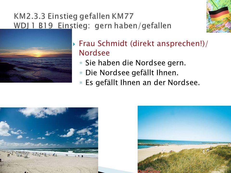  Frau Schmidt (direkt ansprechen!)/ Nordsee ◦ Sie haben die Nordsee gern. ◦ Die Nordsee gefällt Ihnen. ◦ Es gefällt Ihnen an der Nordsee.