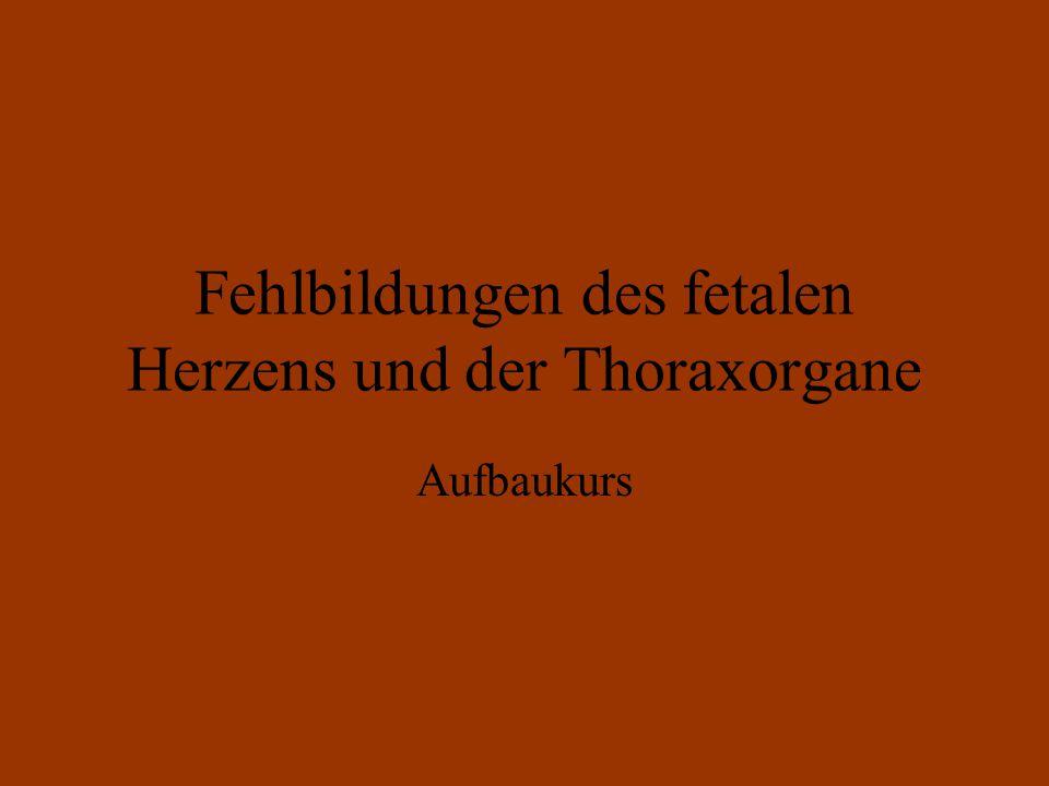 Fehlbildungen des fetalen Herzens und der Thoraxorgane Aufbaukurs