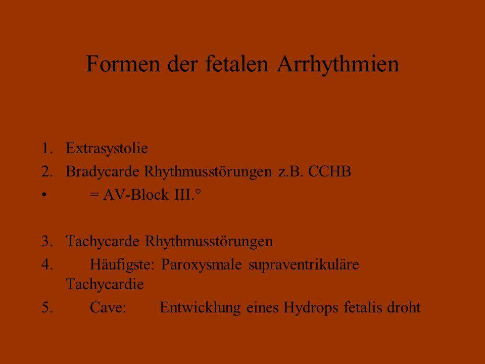 Formen der fetalen Arrhythmien 1.Extrasystolie 2.Bradycarde Rhythmusstörungen z.B.