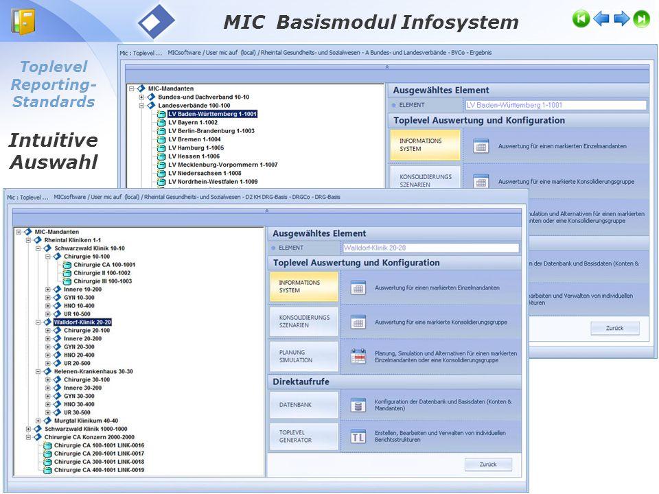 Toplevel Reporting-Standards VAR-Reporting: individuelle Managementinfo MIC Basismodul Infosystem