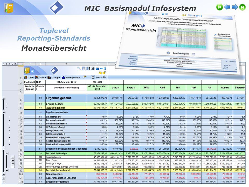 Toplevel Reporting-Standards Monatsübersicht MIC Basismodul Infosystem