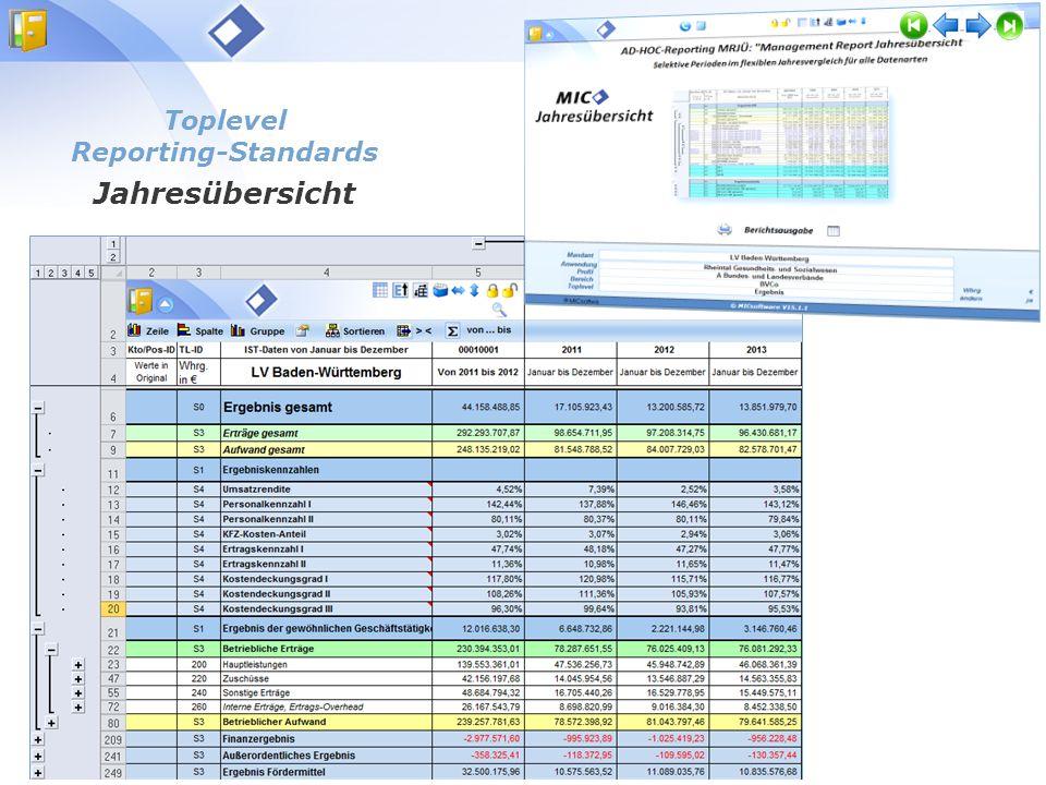 Toplevel Reporting-Standards Monatsübersichten MIC Basismodul Infosystem Toplevel Reporting-Standards Jahresübersicht