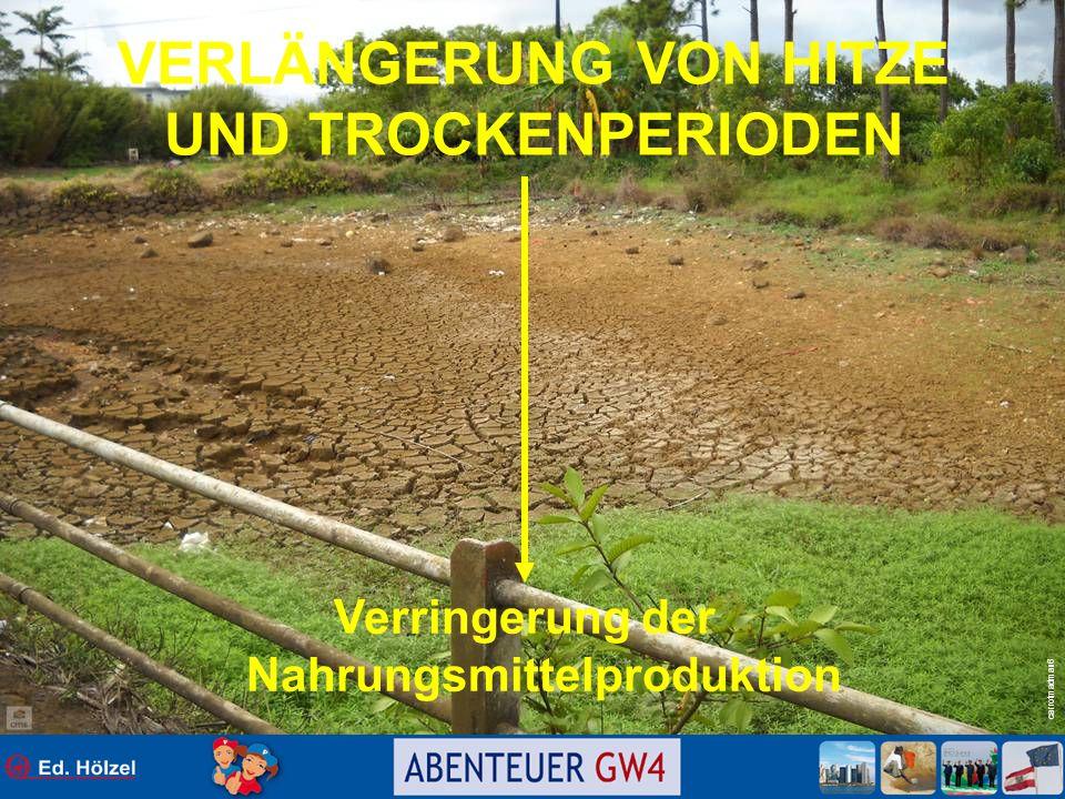 carrotmadman6 VERLÄNGERUNG VON HITZE UND TROCKENPERIODEN Verringerung der Nahrungsmittelproduktion