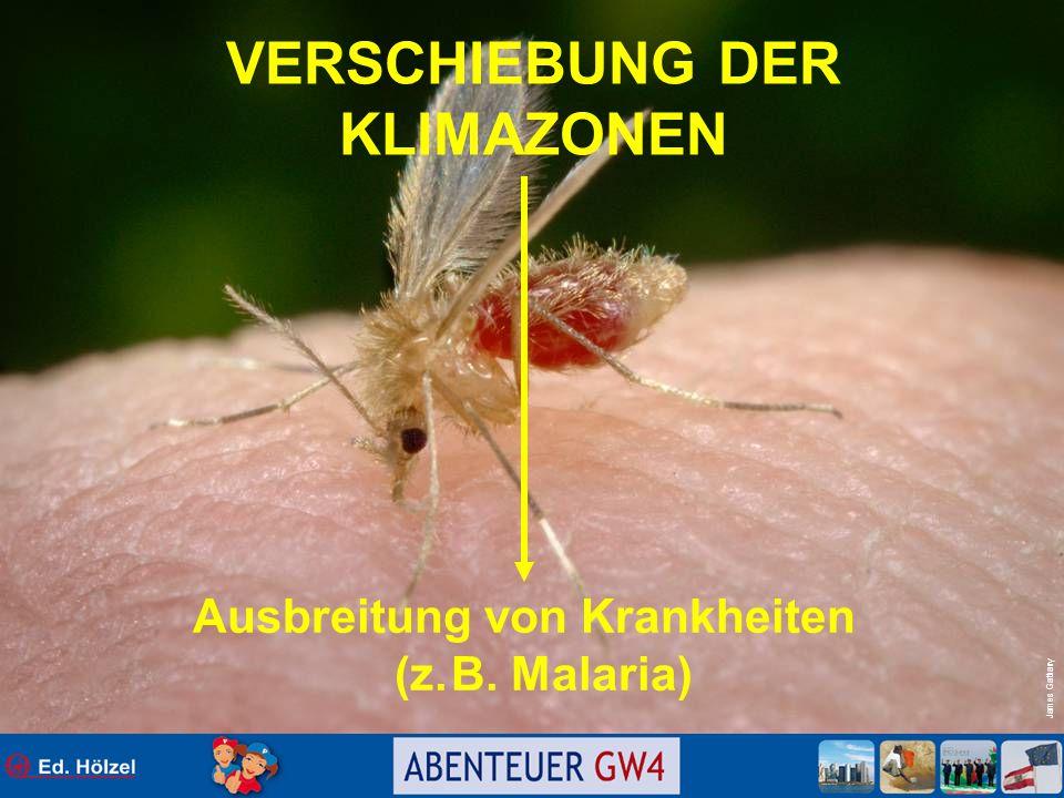 James Gathany VERSCHIEBUNG DER KLIMAZONEN Ausbreitung von Krankheiten (z. B. Malaria)