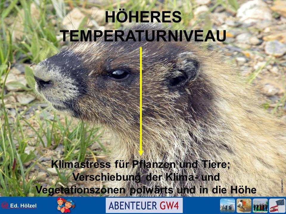 Wilson44691 HÖHERES TEMPERATURNIVEAU Klimastress für Pflanzen und Tiere; Verschiebung der Klima- und Vegetationszonen polwärts und in die Höhe