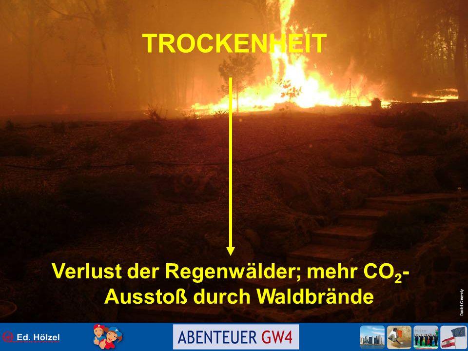 Daniel Cleavely TROCKENHEIT Verlust der Regenwälder; mehr CO 2 - Ausstoß durch Waldbrände