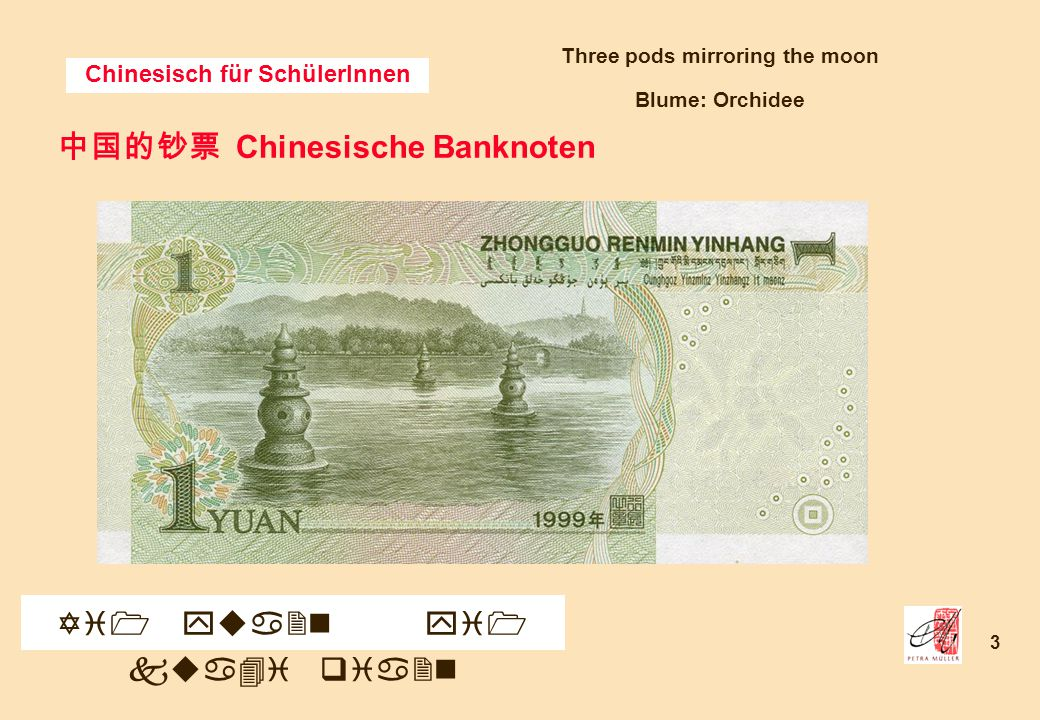 Chinesisch für SchülerInnen 3 中国的钞票 Chinesische Banknoten Yi1 yua2n yi1 kua4i qia2n Three pods mirroring the moon Blume: Orchidee