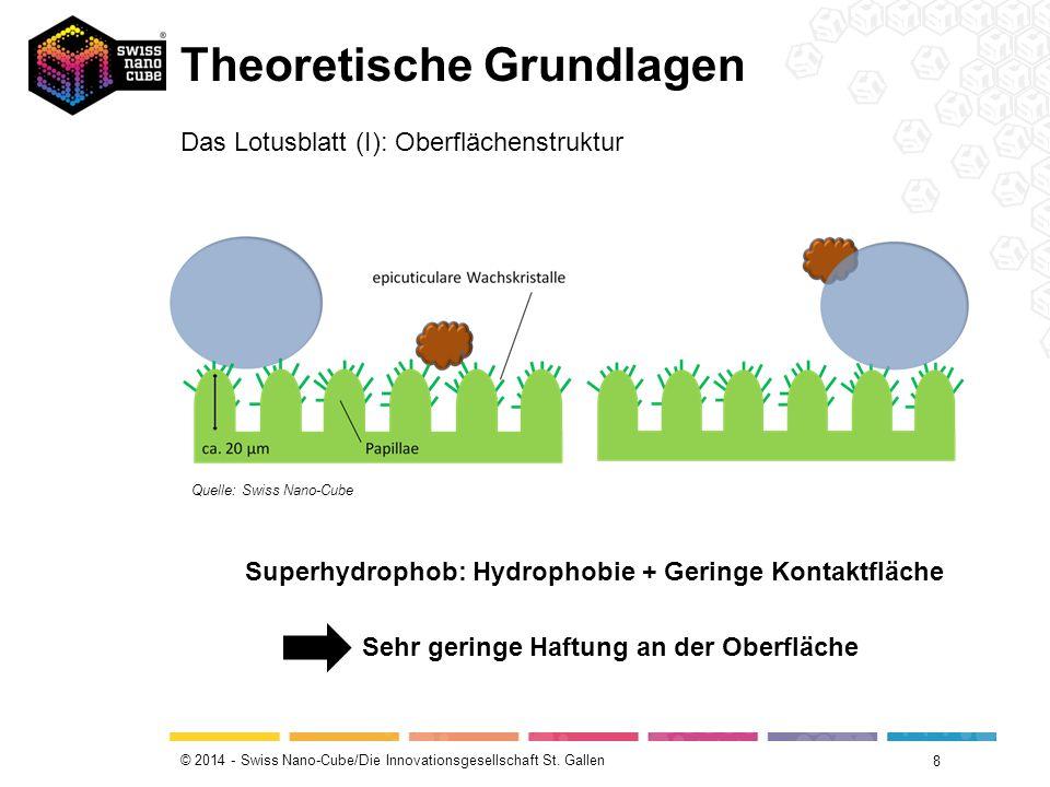 © 2014 - Swiss Nano-Cube/Die Innovationsgesellschaft St. Gallen Theoretische Grundlagen 8 Das Lotusblatt (I): Oberflächenstruktur Quelle: Swiss Nano-C