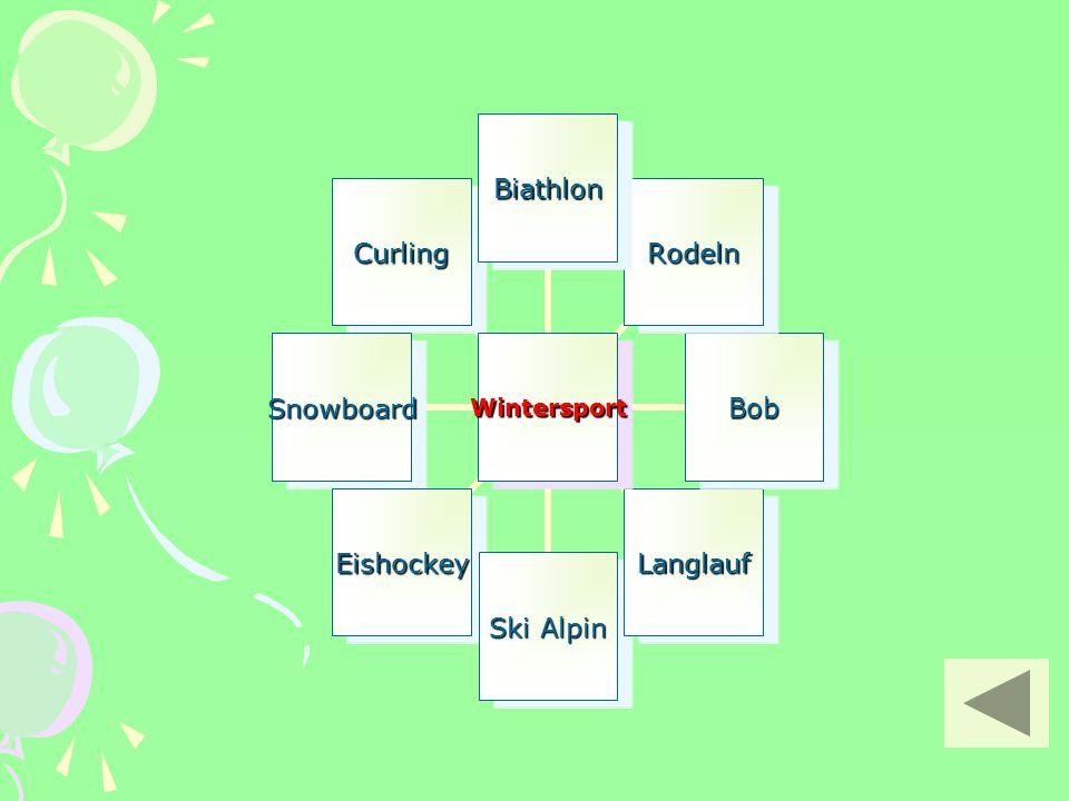 Wintersport Biathlon Rodeln Bob Langlauf Ski Alpin Eishockey Snowboard Curling