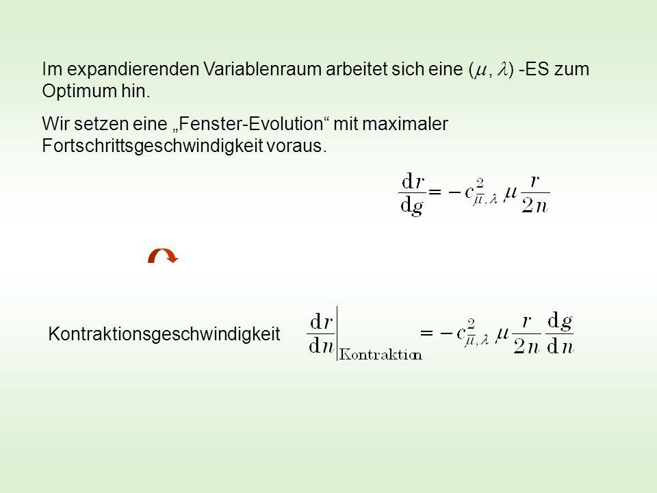 Im expandierenden Variablenraum arbeitet sich eine (  , ) -ES zum Optimum hin.