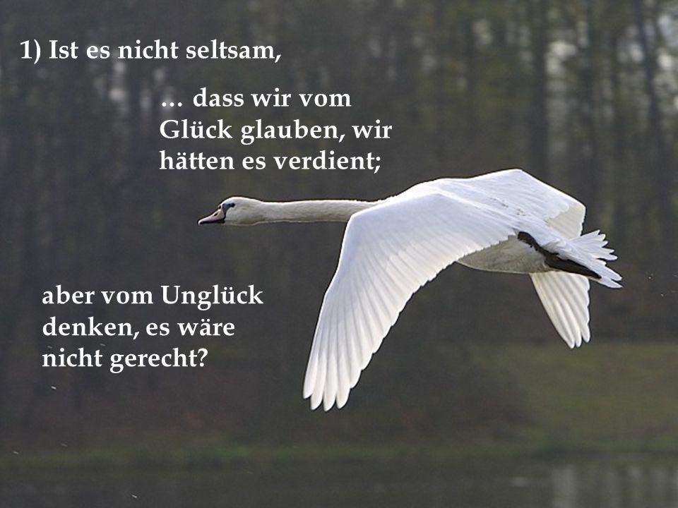 1) Ist es nicht seltsam, … dass wir vom Glück glauben, wir hätten es verdient; aber vom Unglück denken, es wäre nicht gerecht?