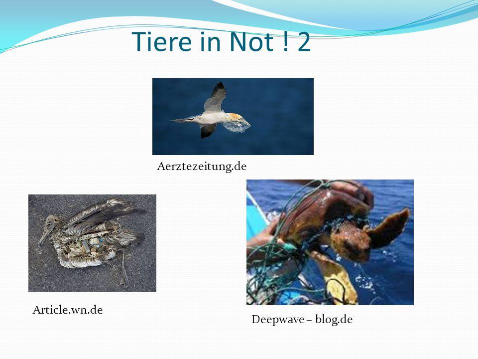 Tiere in Not ! 2 Aerztezeitung.de Article.wn.de Deepwave – blog.de