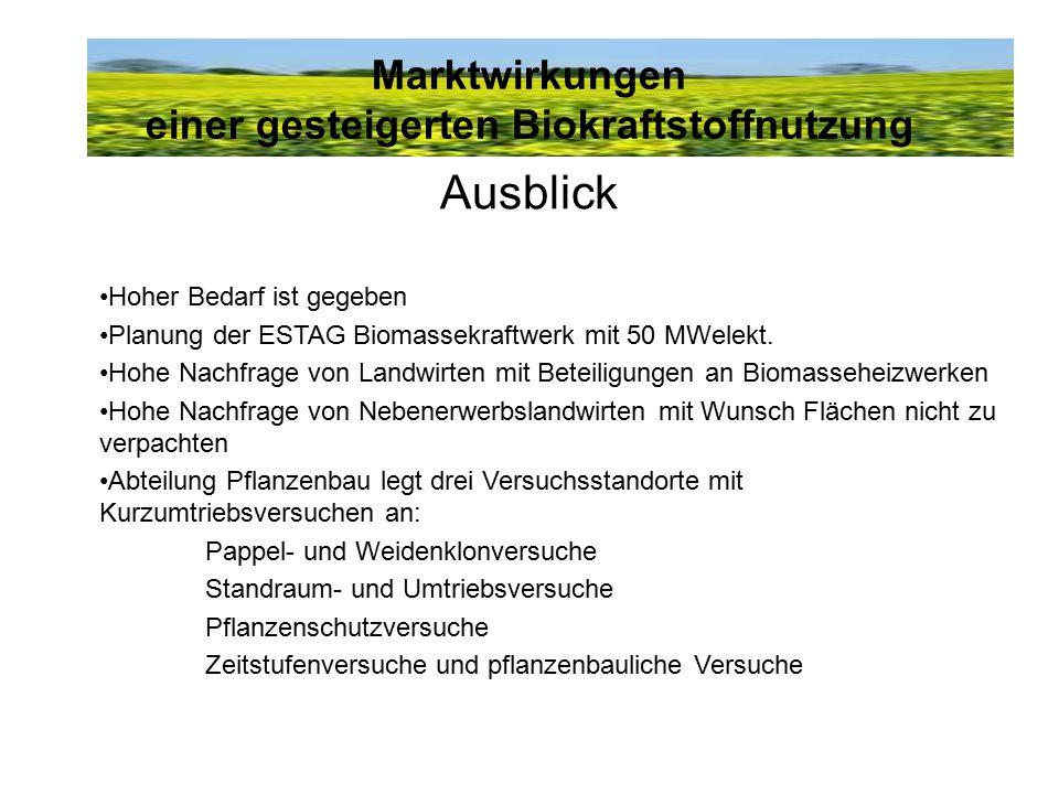 Marktwirkungen einer gesteigerten Biokraftstoffnutzung Ausblick Hoher Bedarf ist gegeben Planung der ESTAG Biomassekraftwerk mit 50 MWelekt. Hohe Nach