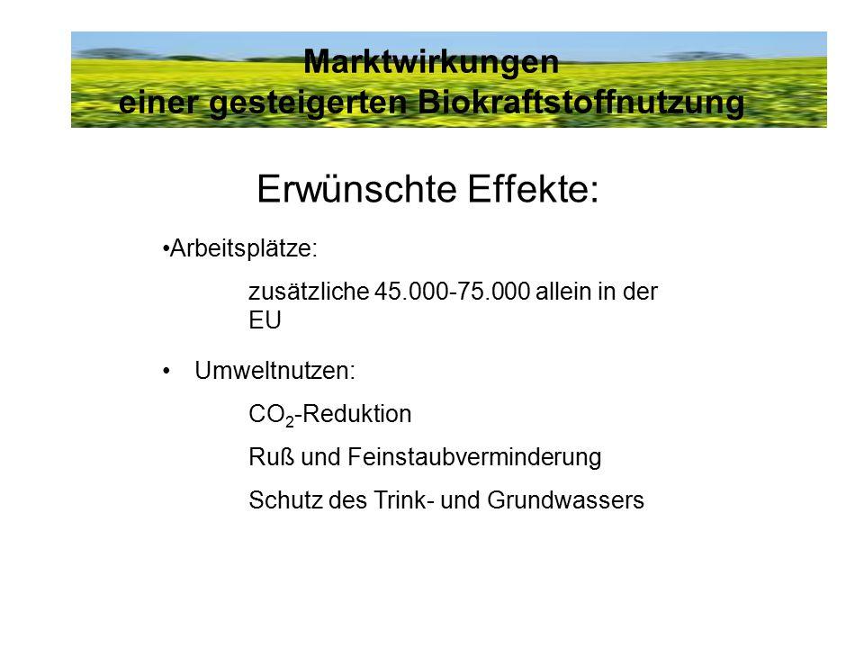 Marktwirkungen einer gesteigerten Biokraftstoffnutzung Erwünschte Effekte: Arbeitsplätze: zusätzliche 45.000-75.000 allein in der EU Umweltnutzen: CO 2 -Reduktion Ruß und Feinstaubverminderung Schutz des Trink- und Grundwassers
