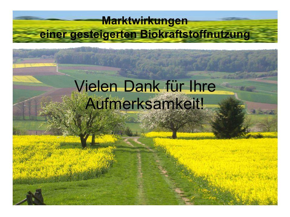 Marktwirkungen einer gesteigerten Biokraftstoffnutzung Vielen Dank für Ihre Aufmerksamkeit!
