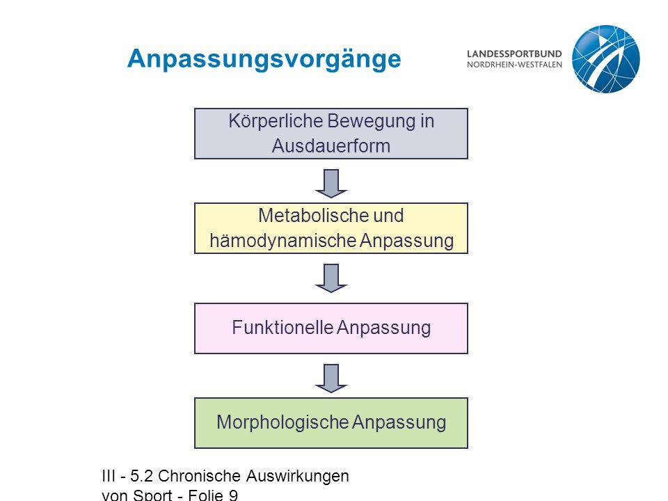 III - 5.2 Chronische Auswirkungen von Sport - Folie 9 Anpassungsvorgänge Körperliche Bewegung in Ausdauerform Morphologische Anpassung Metabolische un