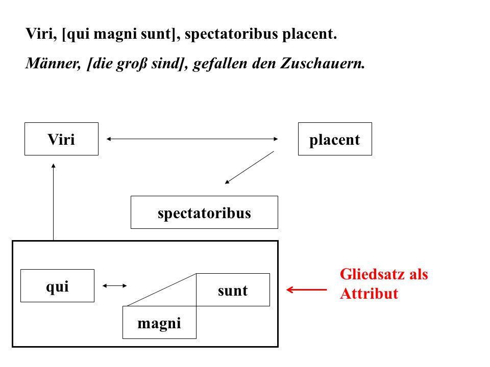 Viri, [qui magni sunt], spectatoribus placent.Männer, [die groß sind], gefallen den Zuschauern.