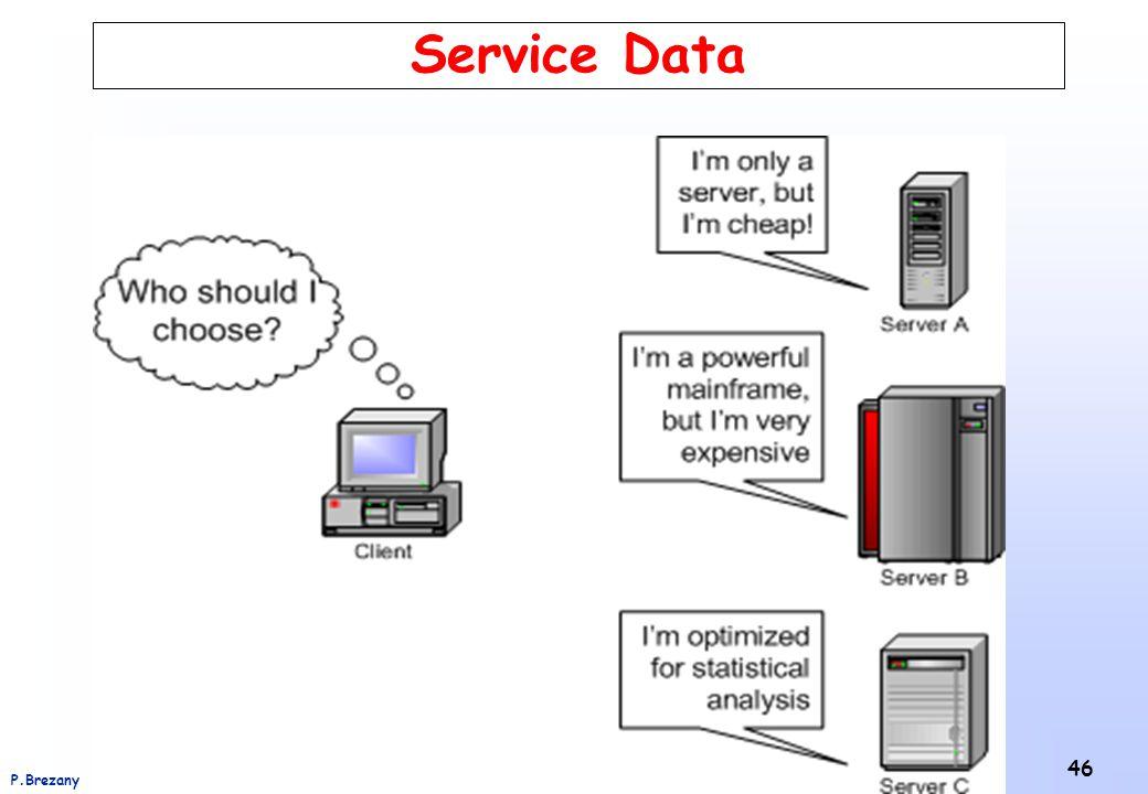 Institut für Softwarewissenschaft - Universität WienP.Brezany 46 Service Data