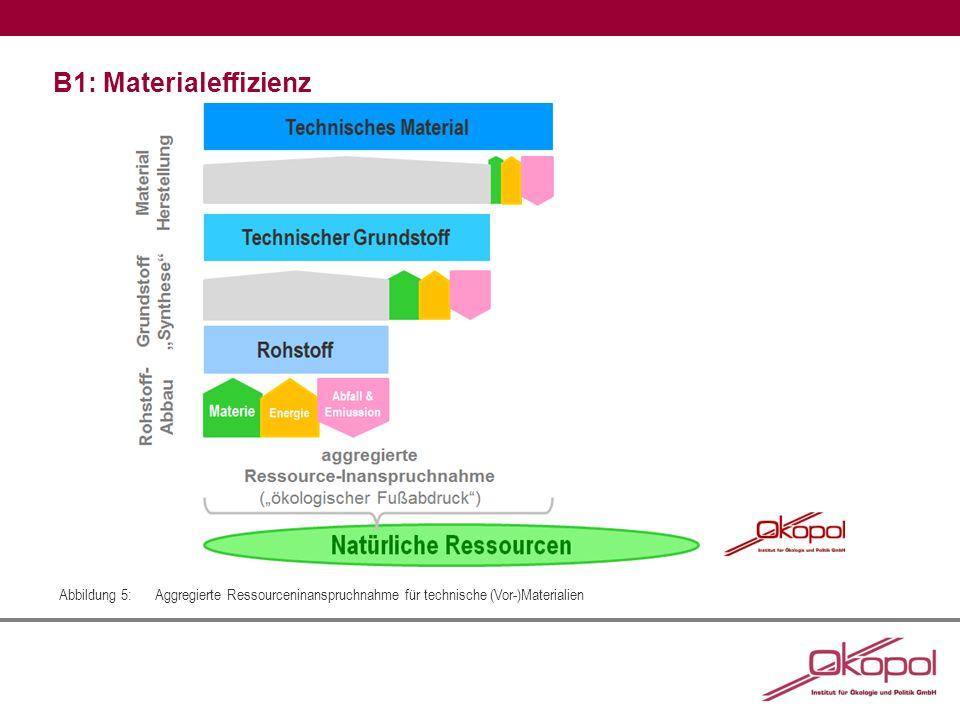B1: Materialeffizienz Abbildung 5:Aggregierte Ressourceninanspruchnahme für technische (Vor-)Materialien