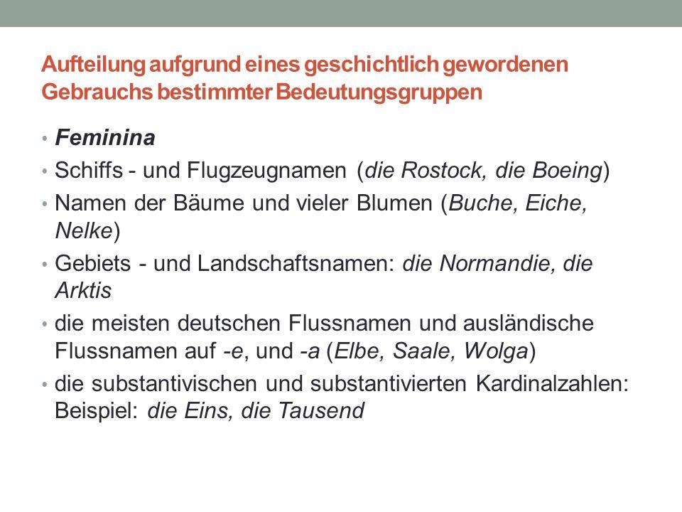 Aufteilung aufgrund eines geschichtlich gewordenen Gebrauchs bestimmter Bedeutungsgruppen Feminina Schiffs - und Flugzeugnamen (die Rostock, die Boein
