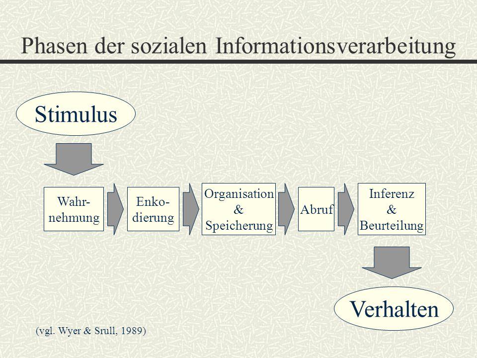 Phasen der sozialen Informationsverarbeitung (vgl. Wyer & Srull, 1989) Wahr- nehmung Enko- dierung Organisation & Speicherung Abruf Inferenz & Beurtei