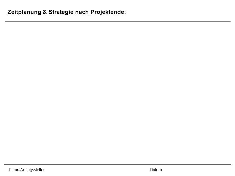 Firma/AntragsstellerDatum Zeitplanung & Strategie nach Projektende: