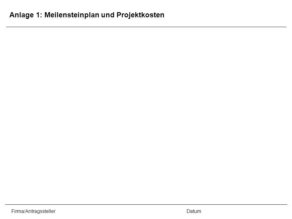 Firma/AntragsstellerDatum Anlage 1: Meilensteinplan und Projektkosten