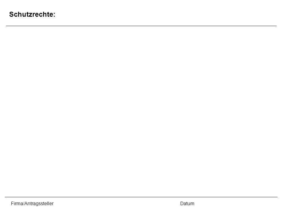 Firma/AntragsstellerDatum Schutzrechte: