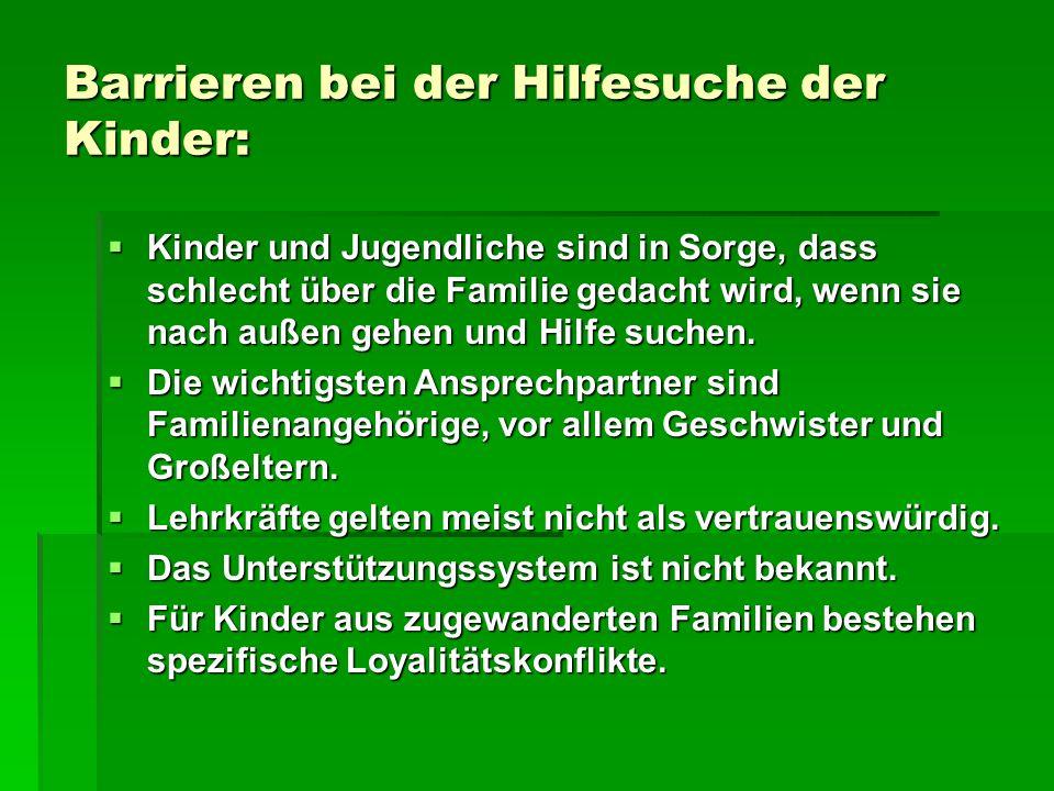 Kinder im Frauenhaus (Ergebnisse einer Befragung deutscher Frauenhäuser)  Jedes dritte Kind war jünger als drei Jahre, acht von zehn Kindern waren im betreuungsbedürftigen Alter.
