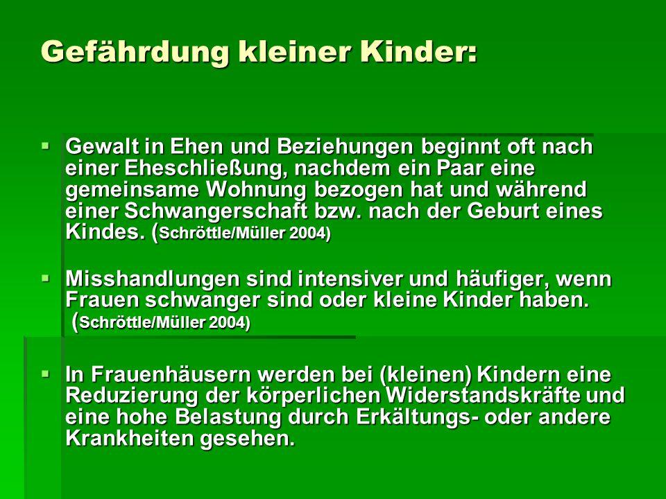 Jugendämter, häusliche Gewalt und der Blick auf Mütter und Väter (WiBIG 2004) Ergebnisse der Befragung von Jugendamtsmitarbeiter/innen in 4 Berliner Bezirken:  82% sahen in der Gewalt der Vaters gegen die Mutter auch Gewalt gegen das Kind.