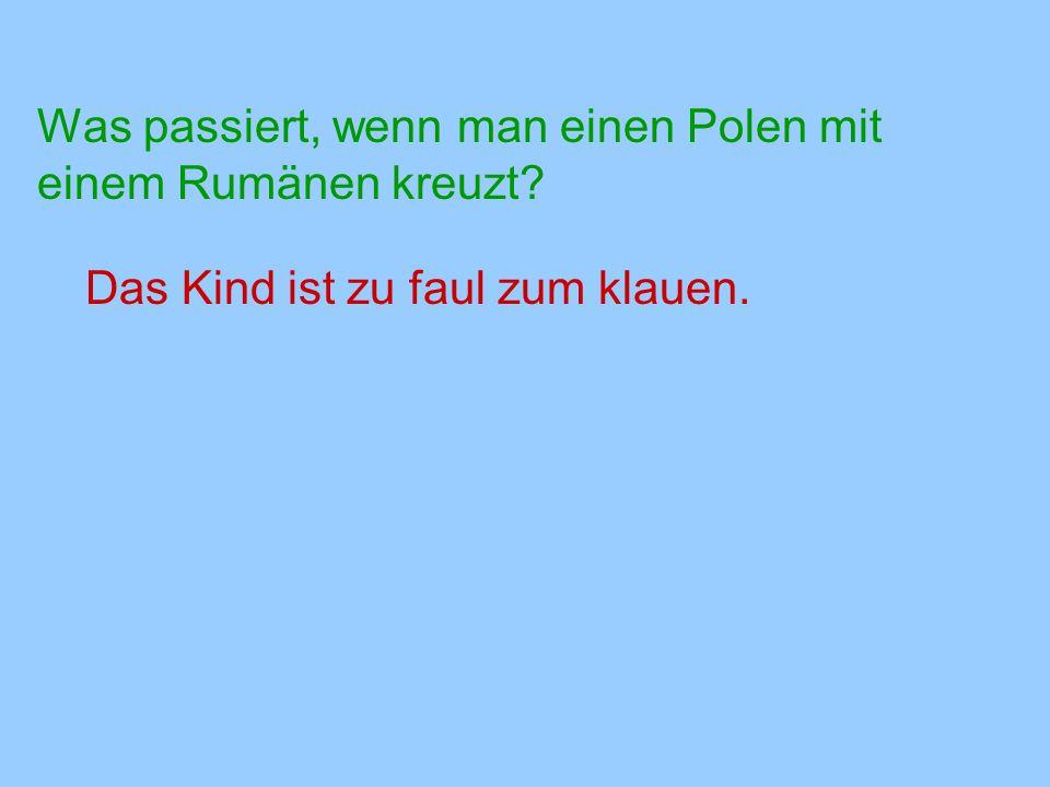 Was passiert, wenn man einen Polen mit einem Rumänen kreuzt? Das Kind ist zu faul zum klauen.