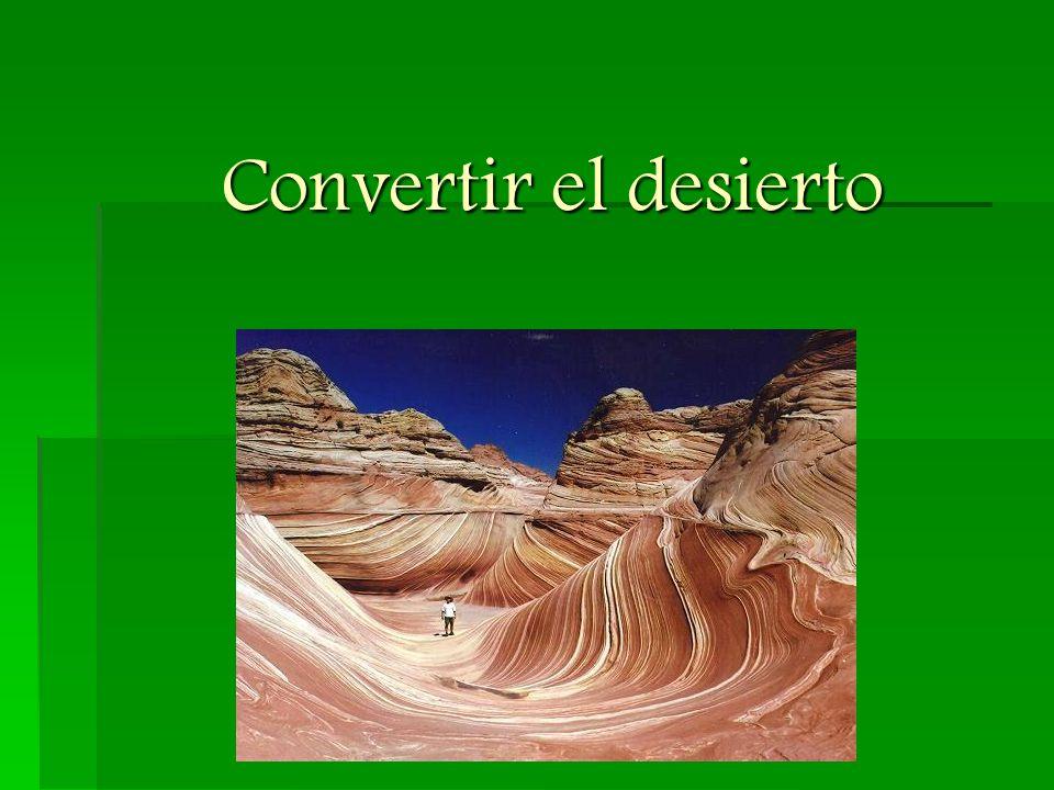 """""""María R.sólo veía el desierto."""