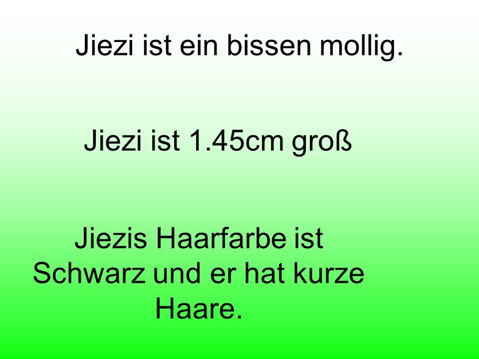 Jiezi hat die Hausnumer 199. Jiezi lebt in Platz Hittisau.