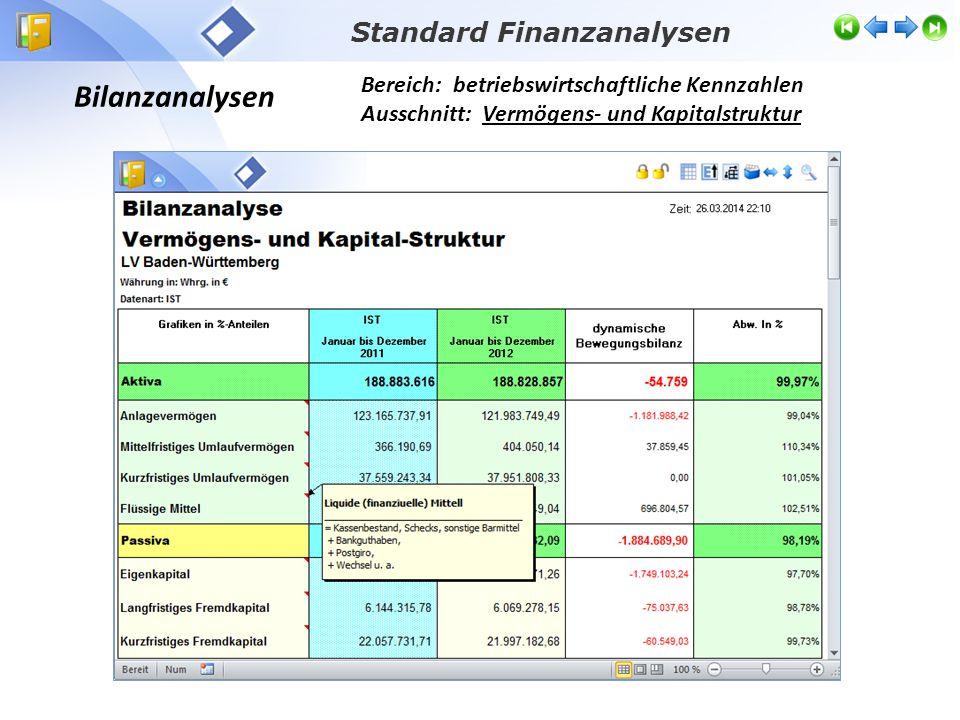 Bilanzanalysen Bereich: betriebswirtschaftliche Kennzahlen Ausschnitt: Vermögens- und Kapitalstruktur Standard Finanzanalysen