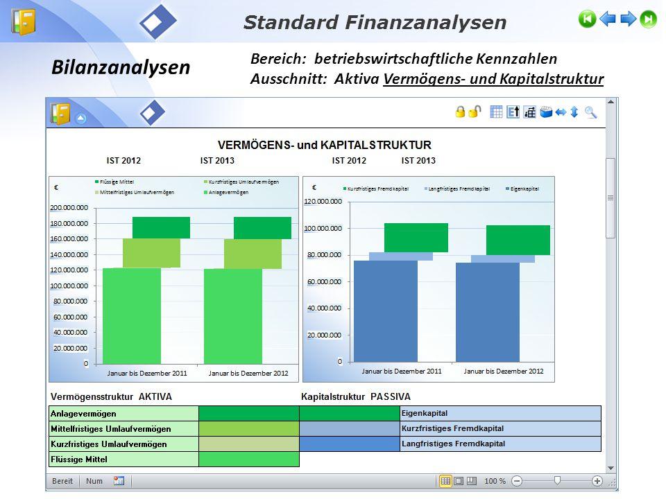 Bilanzanalysen Bereich: betriebswirtschaftliche Kennzahlen Ausschnitt: Aktiva Vermögens- und Kapitalstruktur Standard Finanzanalysen