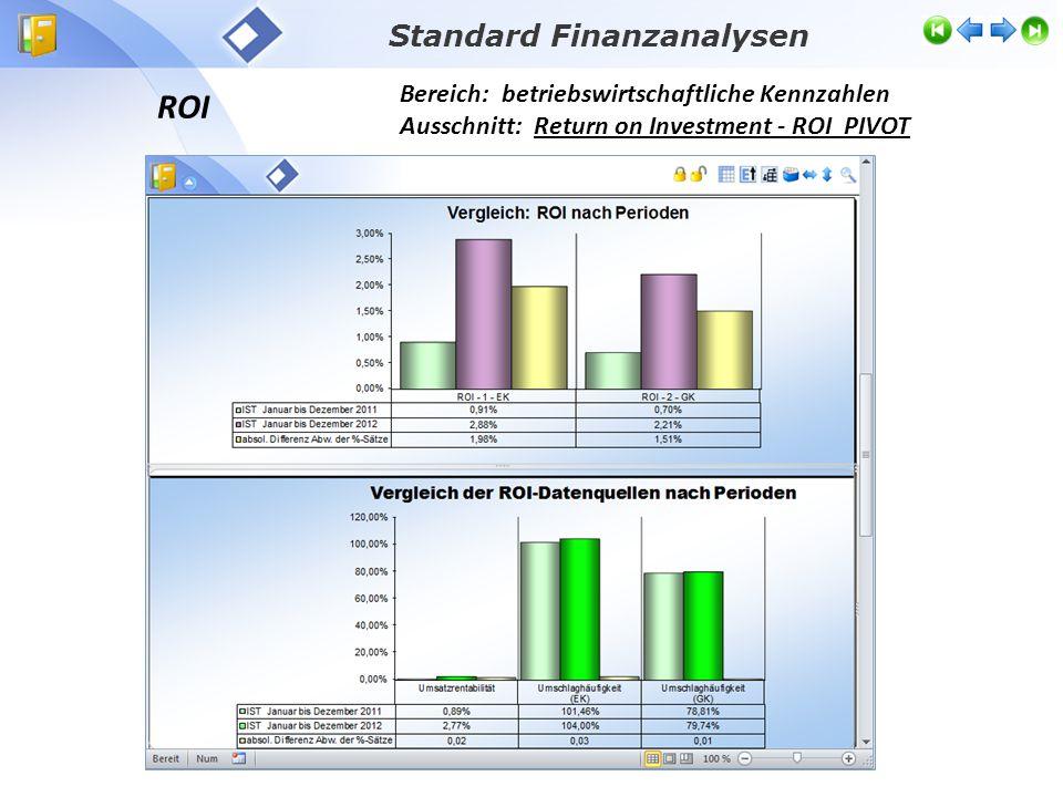 ROI Bereich: betriebswirtschaftliche Kennzahlen Ausschnitt: Return on Investment - ROI PIVOT Standard Finanzanalysen