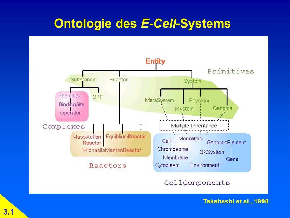 Ontologie des E-Cell-Systems Takahashi et al., 1998 3.1