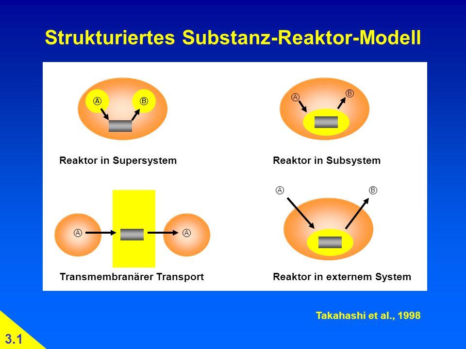 Strukturiertes Substanz-Reaktor-Modell Reaktor in SupersystemReaktor in Subsystem Transmembranärer TransportReaktor in externem System Takahashi et al., 1998 3.1 AB A B AB AA