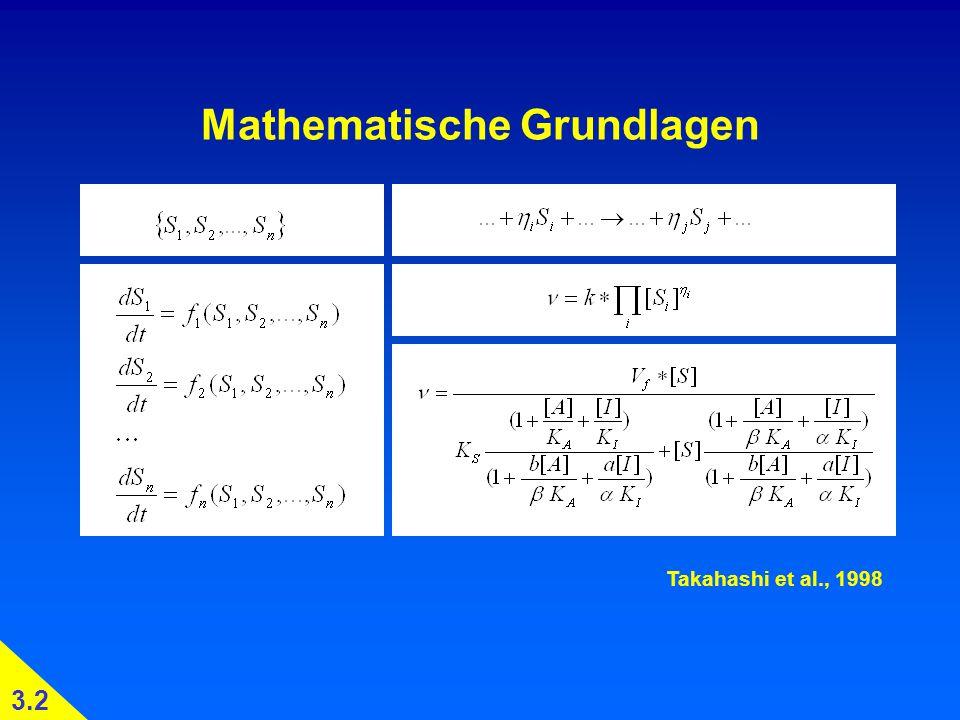 Mathematische Grundlagen Takahashi et al., 1998 3.2