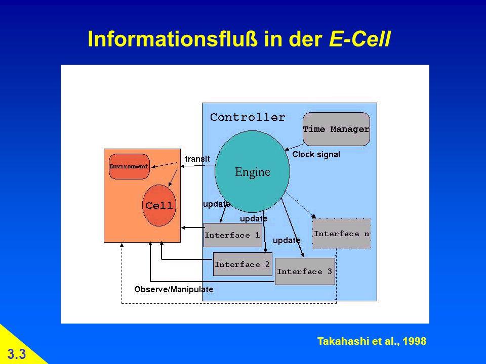 Informationsfluß in der E-Cell Takahashi et al., 1998 3.3
