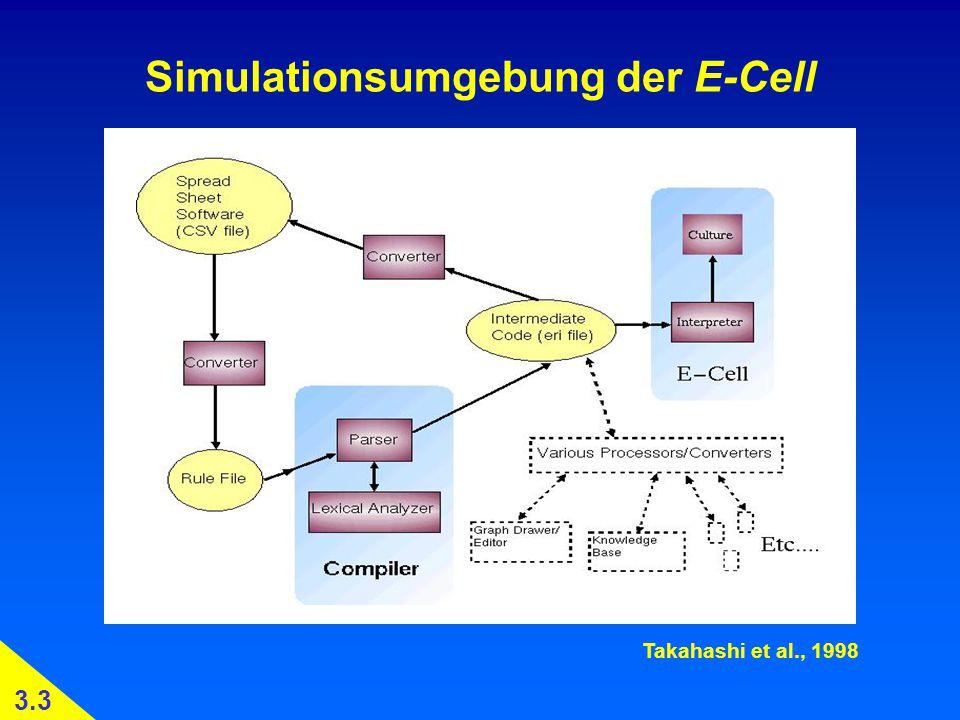 Simulationsumgebung der E-Cell Takahashi et al., 1998 3.3