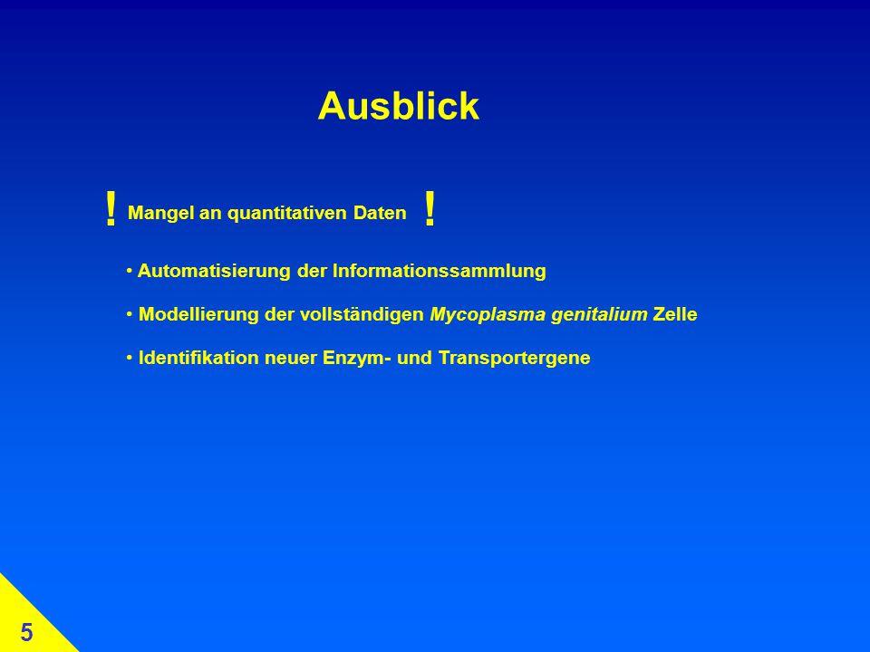 Ausblick 5 Mangel an quantitativen Daten Automatisierung der Informationssammlung !.