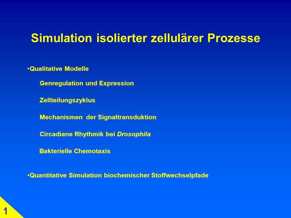Simulation isolierter zellulärer Prozesse Genregulation und Expression Zellteilungszyklus Mechanismen der Signaltransduktion Circadiane Rhythmik bei Drosophila Bakterielle Chemotaxis Quantitative Simulation biochemischer Stoffwechselpfade 1 Qualitative Modelle