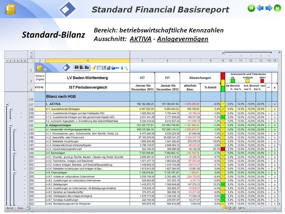 Standard-Bilanz Bereich: betriebswirtschaftliche Kennzahlen Ausschnitt: AKTIVA - Anlagevermögen Standard Financial Basisreport