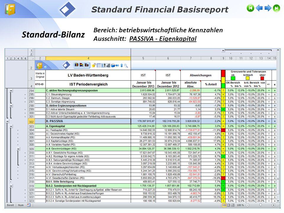 Standard-Bilanz Bereich: betriebswirtschaftliche Kennzahlen Ausschnitt: PASSIVA - Eigenkapital Standard Financial Basisreport