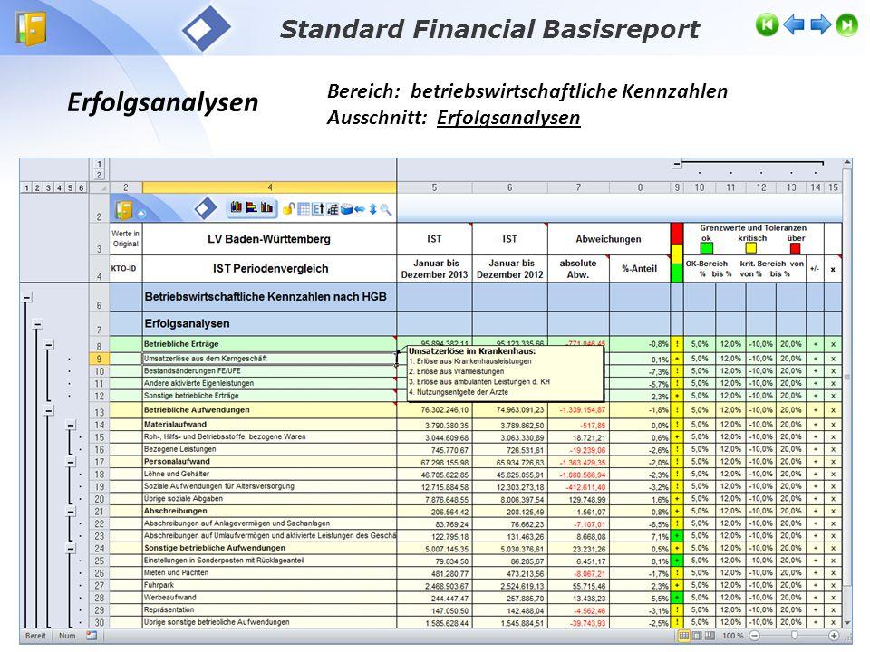 Erfolgsanalysen Bereich: betriebswirtschaftliche Kennzahlen Ausschnitt: Erfolgsanalysen Standard Financial Basisreport