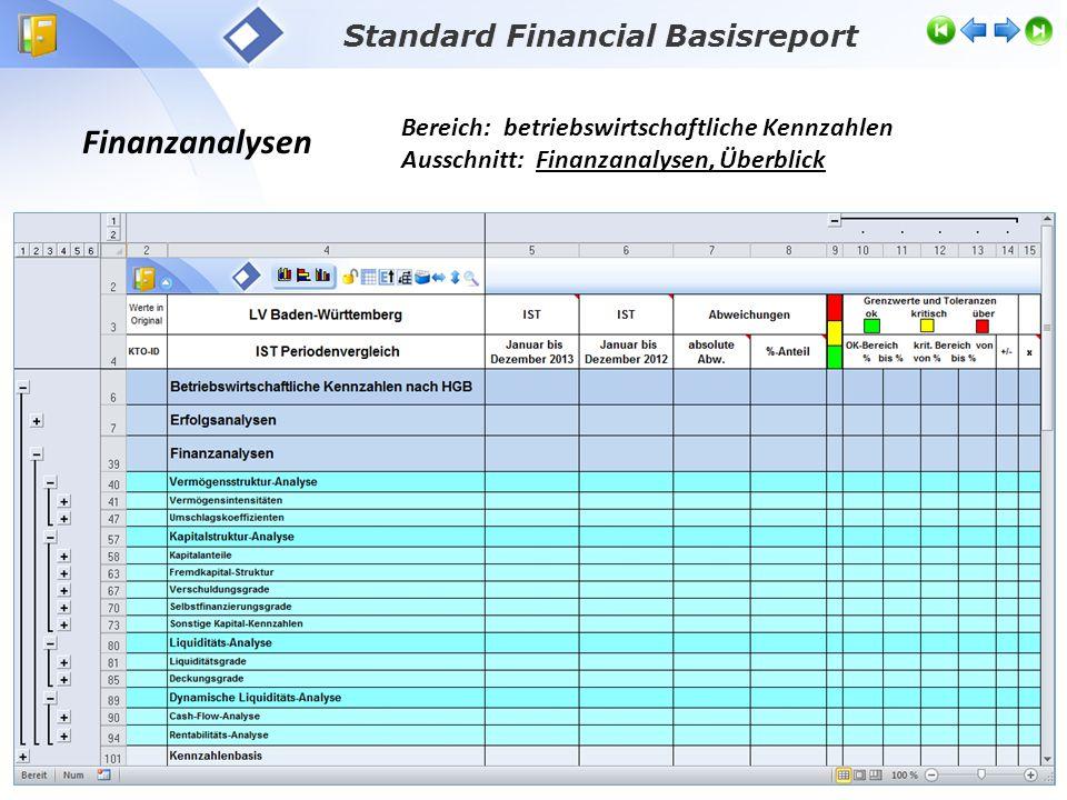 Finanzanalysen Bereich: betriebswirtschaftliche Kennzahlen Ausschnitt: Finanzanalysen, Überblick Standard Financial Basisreport